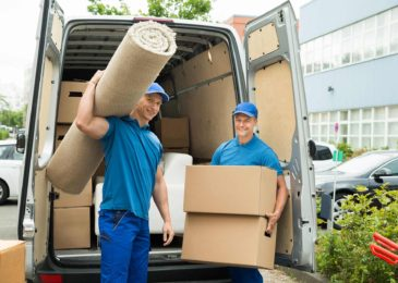 How To Choose The Best International Removal Companies?