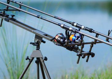Carp Fishing Tips For Summer