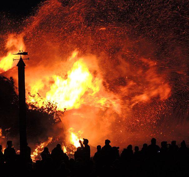 Steps Preparing Your Property For Bushfire Season